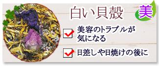 「モーリスメセゲ」オーガニックハーブティ白い貝殻