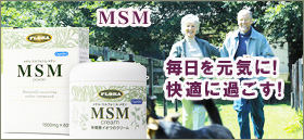 MSMパウダー